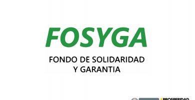 fosyga , fondo de solidaridad y garantía