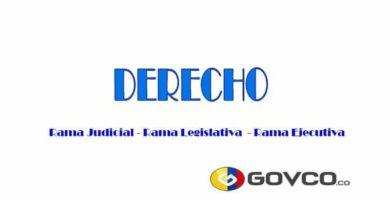 Derecho en Govco