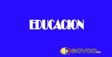 EDUCACIÓN en colombia govco.co