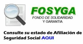 consulta_fosyga