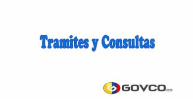 tramites y consultas en colombia